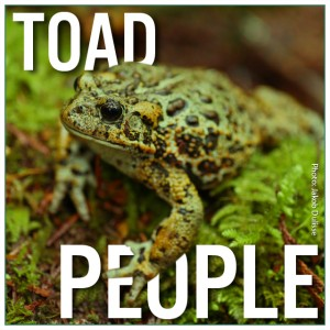 Toad People Indiegogo